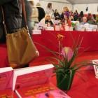 Salon du livre, Roquebrune (06)